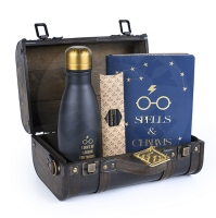 Harry Potter - gift box - Trouble Finds Me
