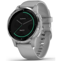 Garmin Vivoactive 4S -powder gray / silver