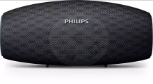 Philips wireless speaker BT6900 EverPlay - black