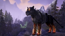 The Elder Scrolls Online: Summerset - Mount DLC (PS4)