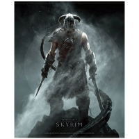 The Elder Scrolls V: Skyrim Dragonborn - WallScroll